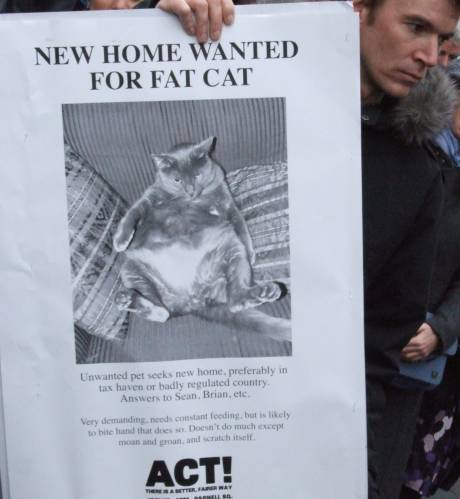 Appeal for fatcat rescue - contact two knaves called Brian.
