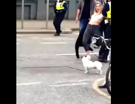 Government thugs arrest young woman https://twitter.com/i/status/1373325765857656838